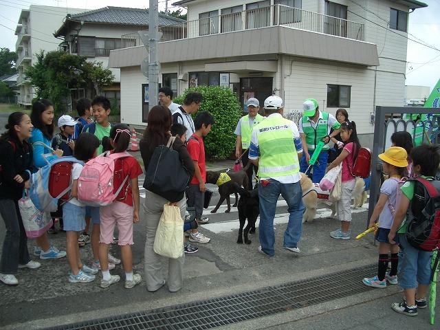 富士ドッグサポーターズクラブのテレビ取材_f0141310_23311654.jpg