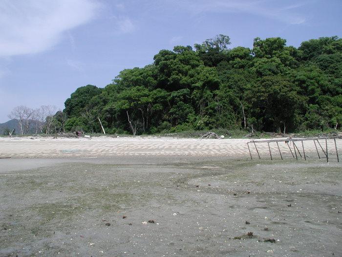 宮島の西側の海で釣り_c0116915_2239073.jpg