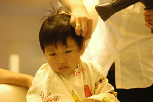 d0129922_833592.jpg