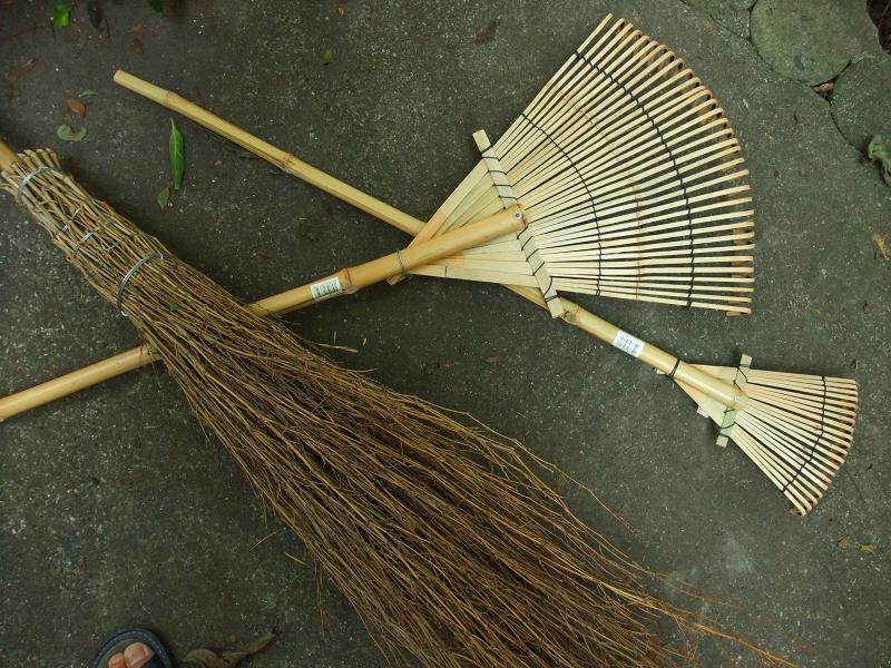 入梅前の庭掃除_f0050534_728028.jpg