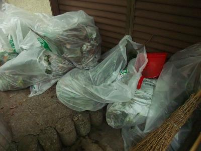 入梅前の庭掃除_f0050534_7281079.jpg
