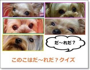 c0033145_20532582.jpg