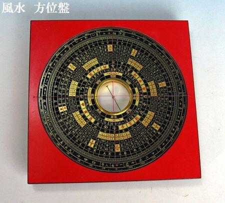 中国蘭「九花、」                       No.621_d0103457_053321.jpg