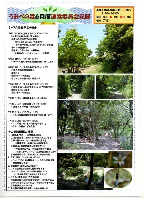 H21年6月度運営委員会_c0108460_1628574.jpg