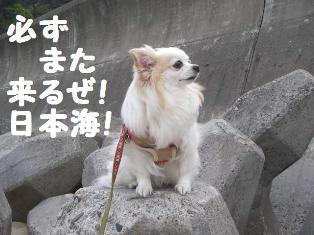c0160092_010517.jpg