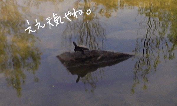 b0189711_23245612.jpg
