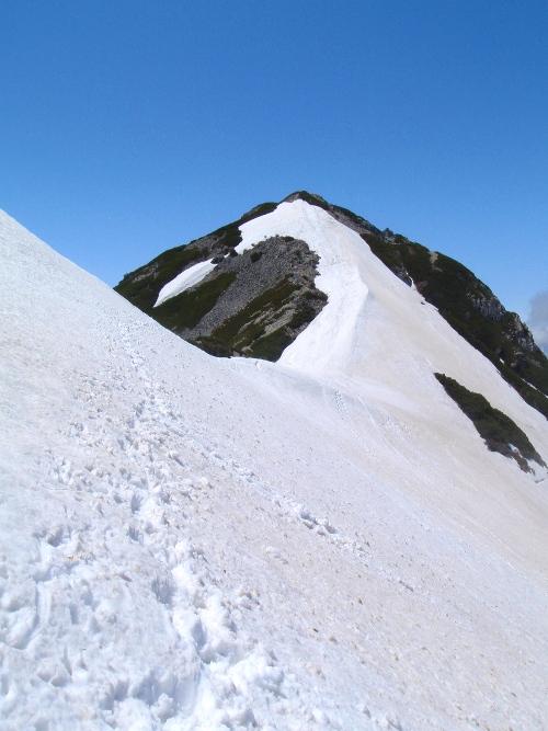 針ノ木岳登山-頂へ_c0177814_10462397.jpg
