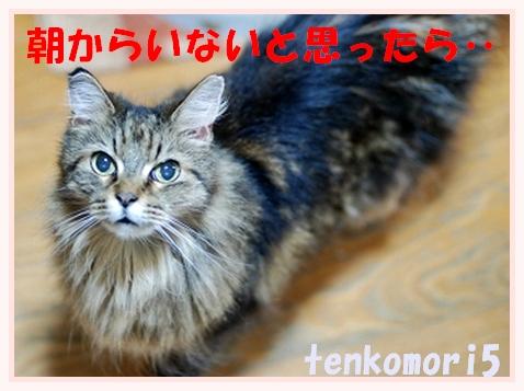 c0116921_2341503.jpg
