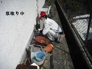 f0031037_2110137.jpg