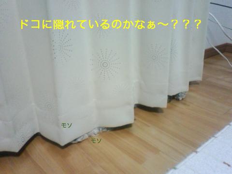 c0177261_2231287.jpg