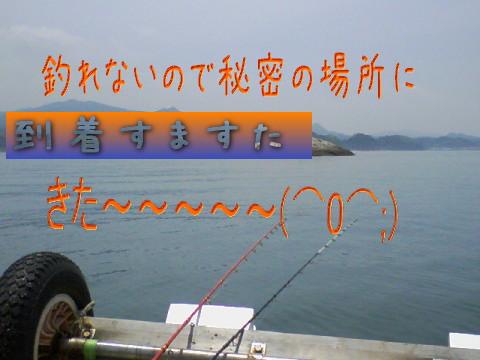 c0169168_94769.jpg