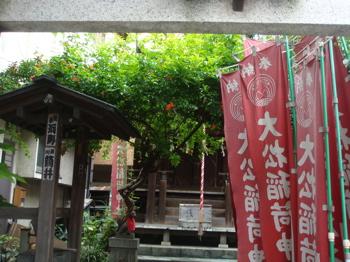 2009.6.8  おさんぽ_a0083571_0422639.jpg