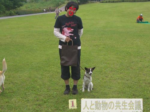 福生市環境フェスティバル公園アジリティ_f0109192_0514543.jpg