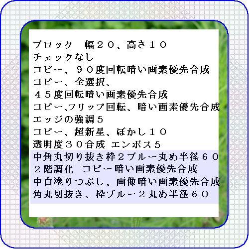 d0048312_1984961.jpg