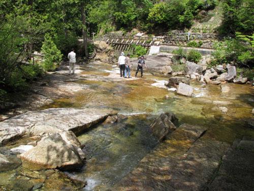 木曽路を歩く 4、赤沢自然休養林_e0048413_21561742.jpg