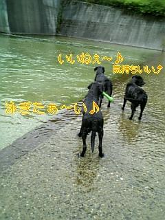 f0148927_183561.jpg