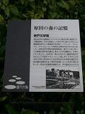 f0169942_1982635.jpg