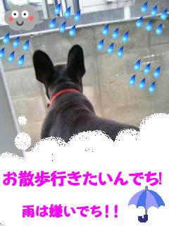 b0182763_1143171.jpg