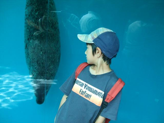 オークリーフ(水族館へ)_f0049672_18333060.jpg