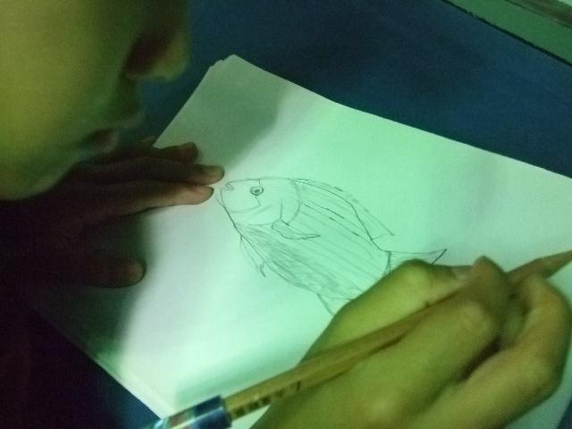オークリーフ(水族館へ)_f0049672_18405154.jpg