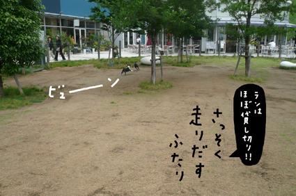 f0170072_16304410.jpg