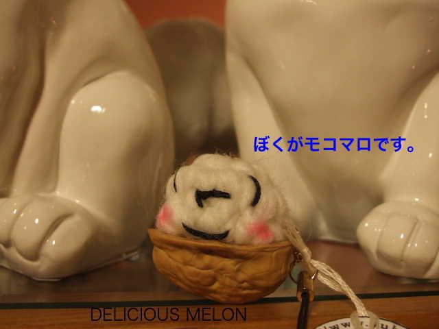 ★★新作!YUKAOIさんのアクセサリーが入荷しています。新登場モコマロくんとは?でました〜_c0108789_2046494.jpg