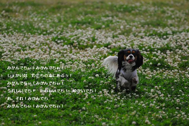 f0126591_11395594.jpg