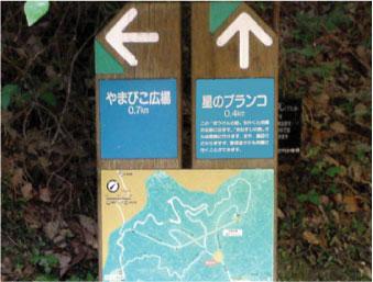 散歩部活動報告 「星のブランコ」_e0142619_325971.jpg