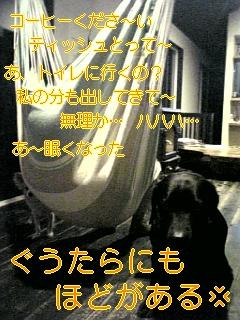f0148927_19143023.jpg