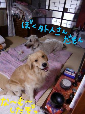 f0176830_20114968.jpg
