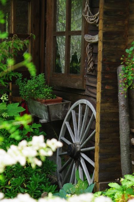 「ターシャの庭」にて ~花フェスタ記念公園~_d0145934_10585156.jpg