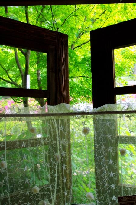 「ターシャの庭」にて ~花フェスタ記念公園~_d0145934_10595385.jpg