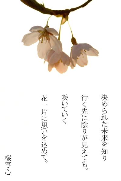 b0103313_13515933.jpg