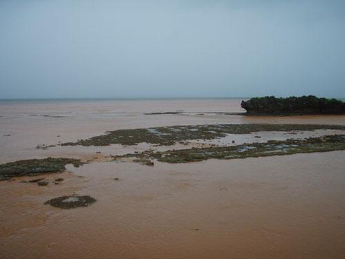6月12日大雨洪水土砂崩れ警報まで出てても・・・_c0070933_22113231.jpg