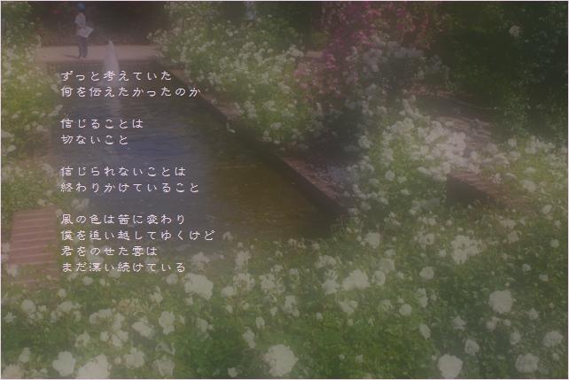 b0154475_1110119.jpg