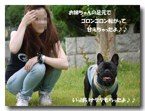 b0134197_15533963.jpg