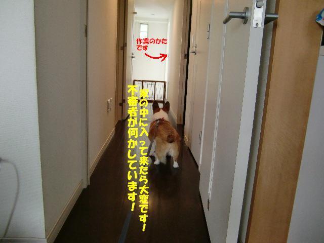 f0182121_12124629.jpg