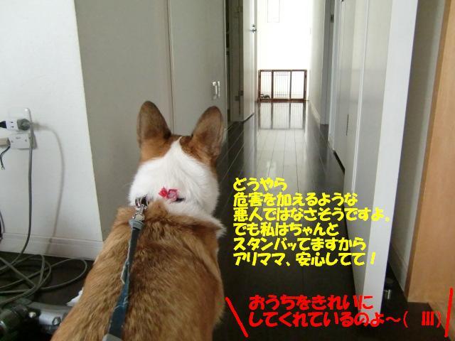 f0182121_1223134.jpg