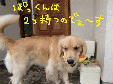 f0176830_174304.jpg