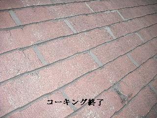 f0031037_1991885.jpg