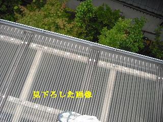 f0031037_1992864.jpg