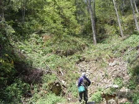 第四回 岩泉 レベル4の斜面を越えて・・_b0096052_1012245.jpg