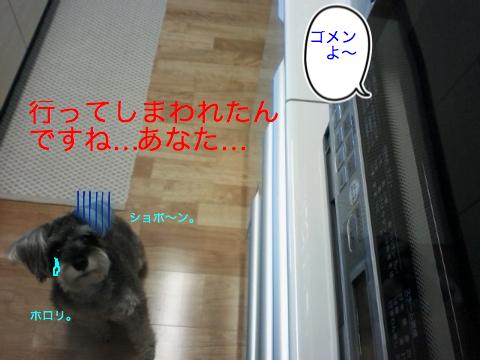 c0177261_2221565.jpg