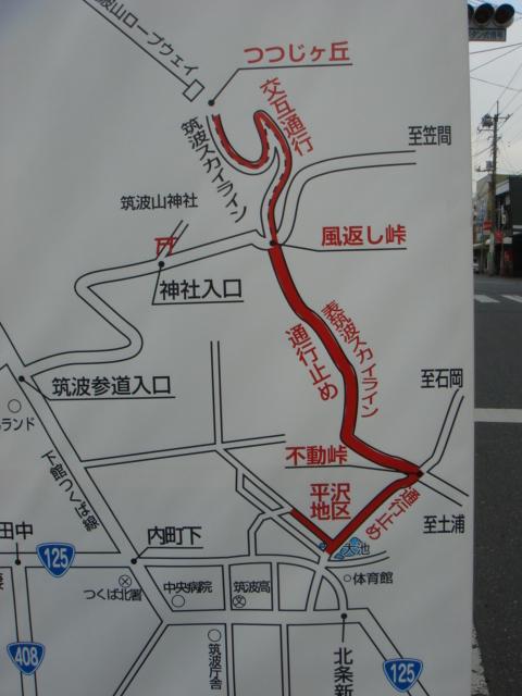 平沢官衙遺跡とあやめ_b0124462_18193344.jpg