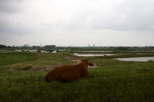 ベトナム、ハロン湾からバッチャン焼の町へ_d0148902_12454212.jpg