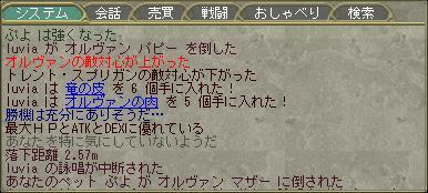 b0168328_20252038.jpg