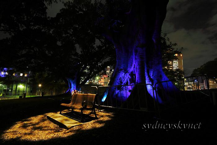 --vivid sydney 2009-- part 1_f0084337_2311377.jpg