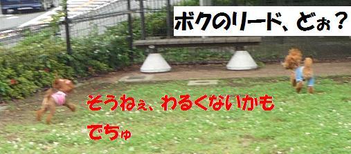 e0163545_1610171.jpg