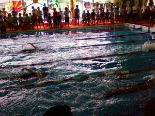 第33回JSSマスターズ水泳大会_e0173655_20594098.jpg