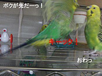 f0196665_23565559.jpg